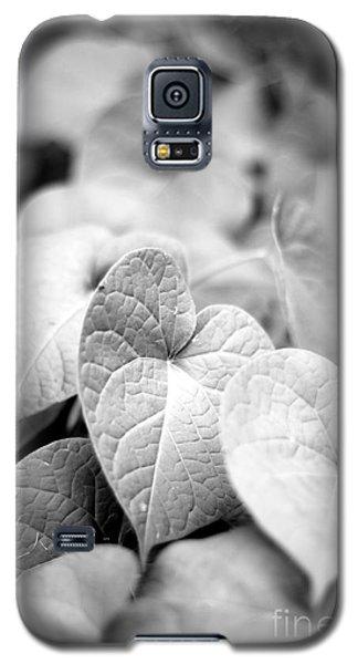 Morning Glory Vines Galaxy S5 Case