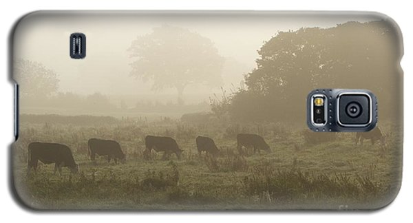 Morning Graze Galaxy S5 Case by Gary Bridger
