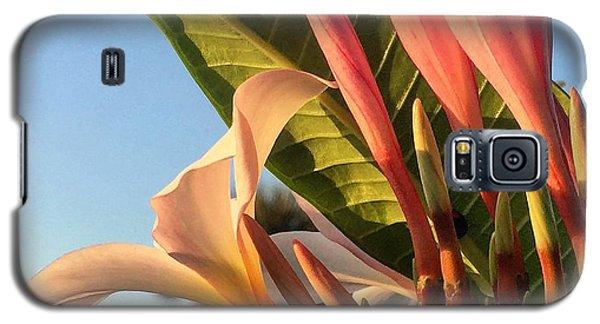 Morning Heaven Galaxy S5 Case