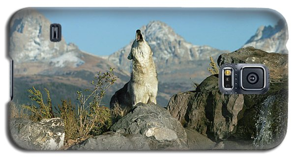 Morning Howl Galaxy S5 Case