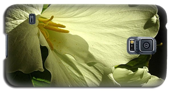 Galaxy S5 Case featuring the photograph Morning Light - Trillium by Angie Rea