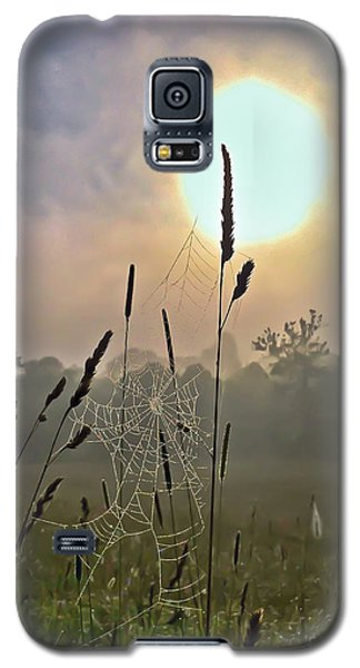 Morning Light Galaxy S5 Case by Kerri Farley