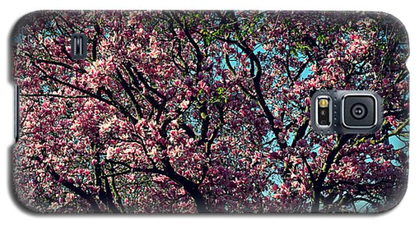 Morning Lit Magnolia Galaxy S5 Case