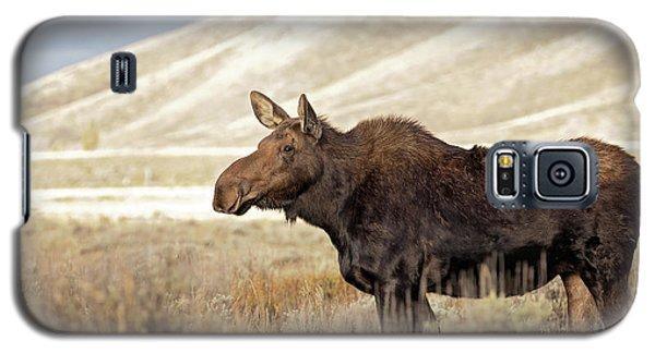 Morning Moose Galaxy S5 Case