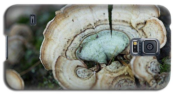 Morning Mushroom Galaxy S5 Case