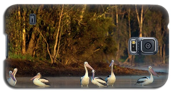 Morning On The River Galaxy S5 Case