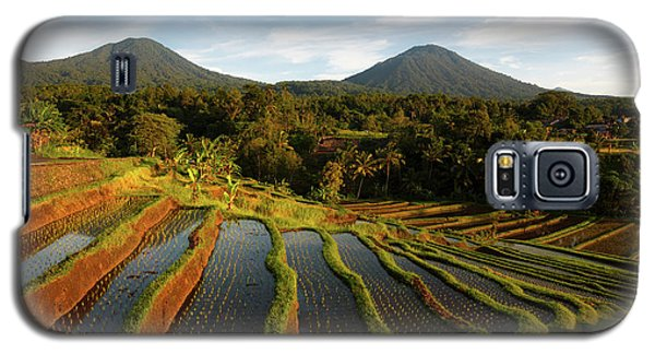Morning On The Terrace Galaxy S5 Case
