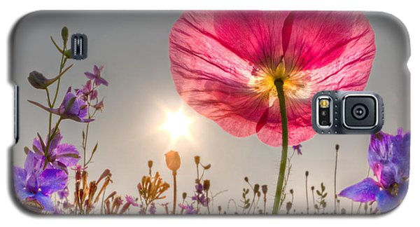 Morning Pink Galaxy S5 Case