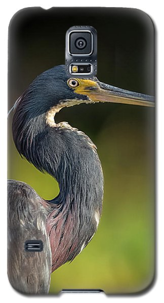 Morning Portrait Galaxy S5 Case