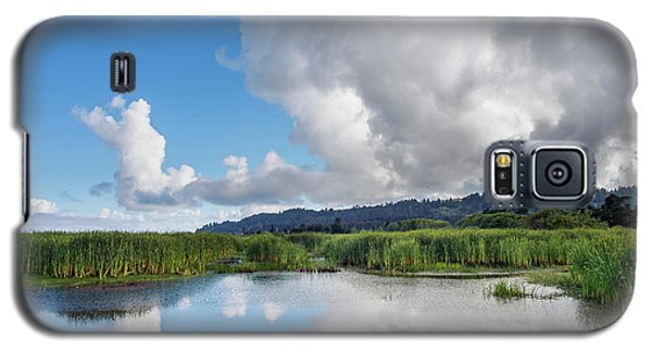 Galaxy S5 Case featuring the photograph Morning Reflections On A Marsh Pond by Greg Nyquist
