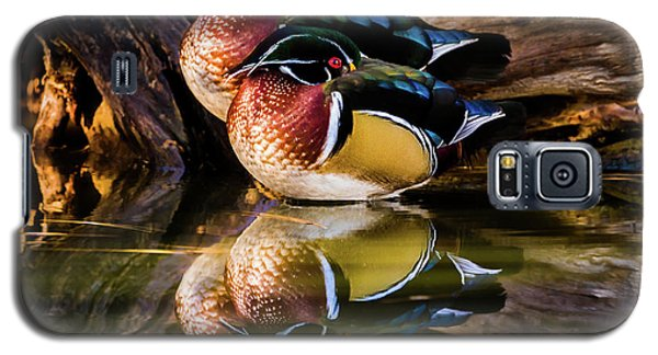 Morning Reflections - Wood Ducks Galaxy S5 Case