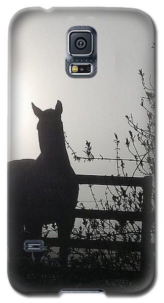 Morning Silhouette #1 Galaxy S5 Case