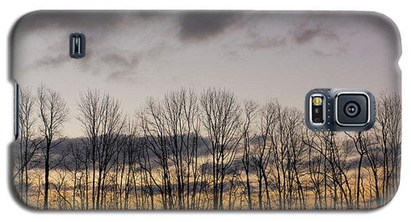 Morning Sky Galaxy S5 Case by Nicki McManus