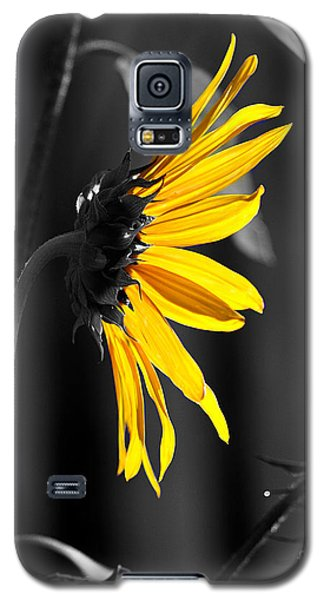 Morning Sun Galaxy S5 Case