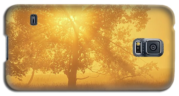 Galaxy S5 Case featuring the photograph Morning Sun by Dan Jurak