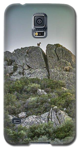 Morning Sun Lit Rocky Hill Greece Galaxy S5 Case by Jivko Nakev