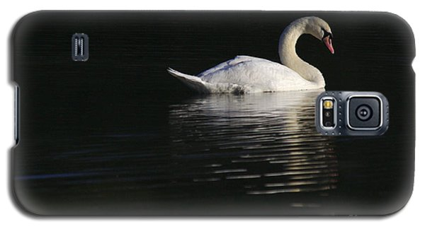 Morning Swan Galaxy S5 Case