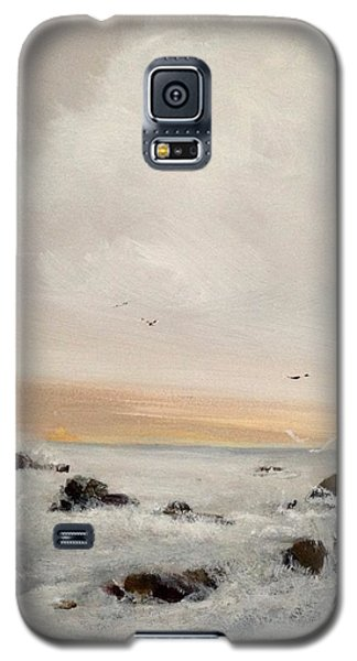 Morning Walk Galaxy S5 Case by Helen Harris