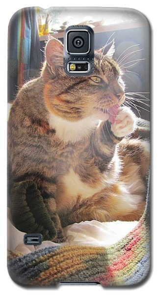 Morning Wash Galaxy S5 Case by Dianne  Connolly