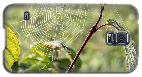 Morning Web #1 Galaxy S5 Case