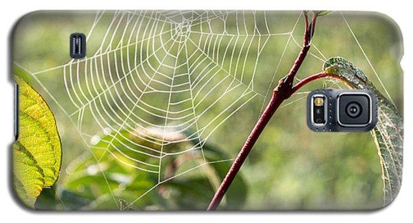 Morning Web #1 Galaxy S5 Case