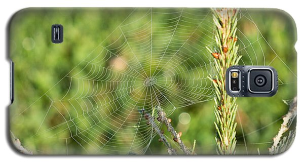 Morning Web #2 Galaxy S5 Case
