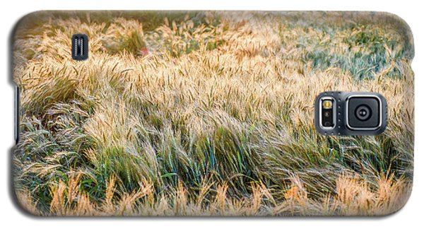 Morning Wheat Galaxy S5 Case