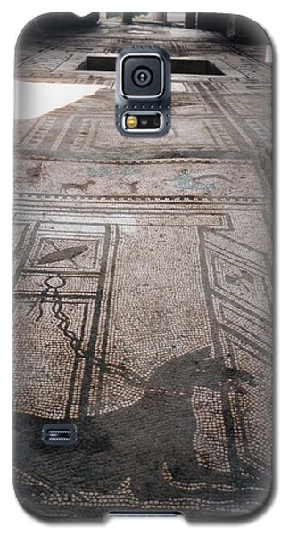 Galaxy S5 Case featuring the photograph Mosaic In Pompeii by Marna Edwards Flavell