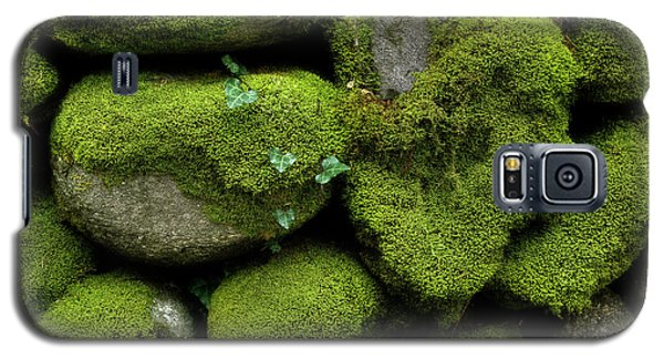 Galaxy S5 Case featuring the photograph Moss And Ivy by Mike Eingle