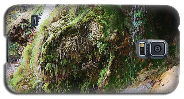 Moss And Waterfalls Galaxy S5 Case by Sheila Brown