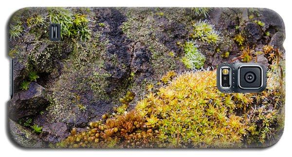 Moss Garden Galaxy S5 Case