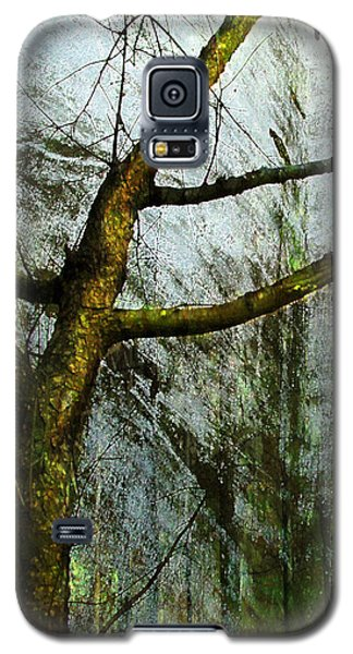 Moss On Tree Galaxy S5 Case