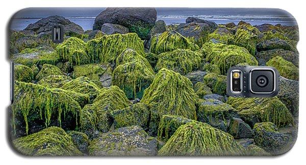 Moss Rocks Galaxy S5 Case