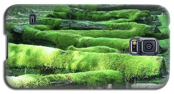 Mossy Fence Galaxy S5 Case