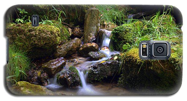 Mossy Glenn Spring 2 Galaxy S5 Case by Bonfire Photography