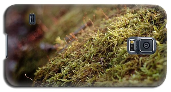 Mossy Galaxy S5 Case