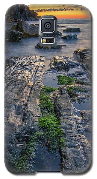 Mossy Rocks At Bald Head Cliff  Galaxy S5 Case