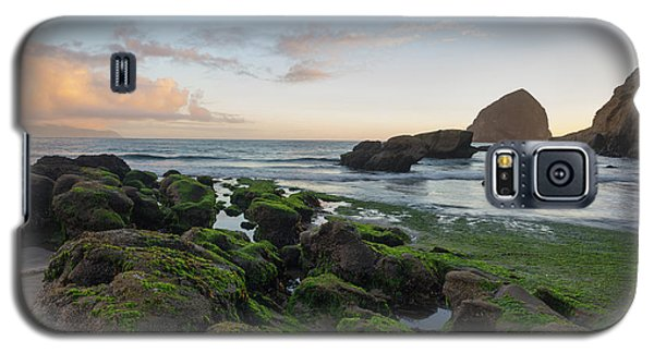 Mossy Rocks At The Beach Galaxy S5 Case
