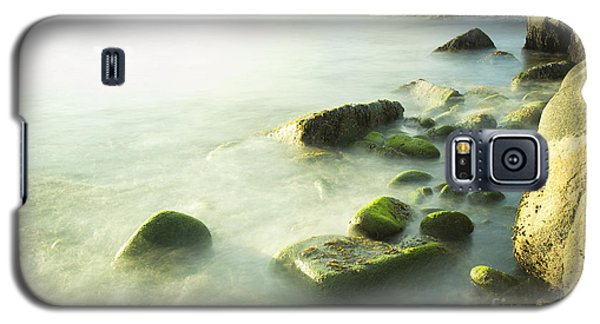 Mossy Rocks On Shoreline Galaxy S5 Case
