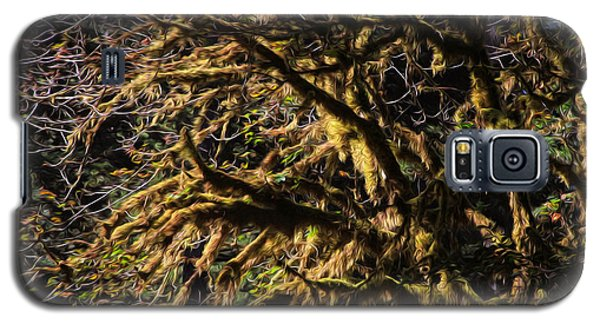 Mossy Trees Galaxy S5 Case