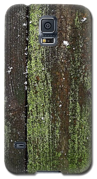 Galaxy S5 Case featuring the photograph Mossy Winter Fence by Mary Bedy