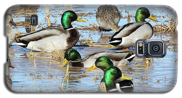 Mostly Mallards Galaxy S5 Case
