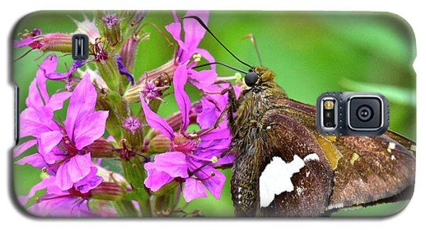 Moth Galaxy S5 Case
