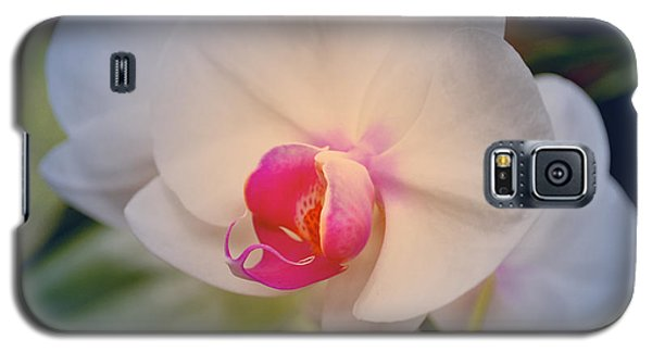 Moth Orchid 1 Galaxy S5 Case