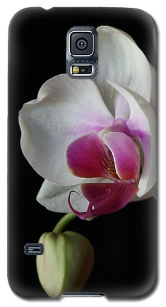 Galaxy S5 Case featuring the photograph Moth Orchid 1 by Marna Edwards Flavell