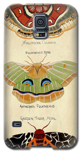 Moth Study Galaxy S5 Case