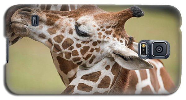 Mother And Baby Giraffes Galaxy S5 Case