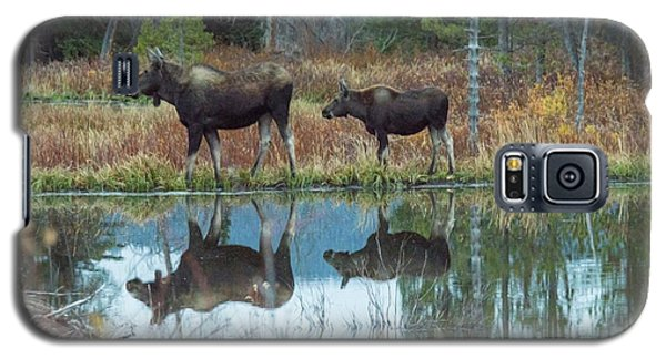 Galaxy S5 Case featuring the photograph Mother And Baby Moose Reflection by Rebecca Margraf