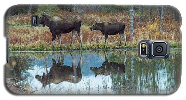 Mother And Baby Moose Reflection Galaxy S5 Case
