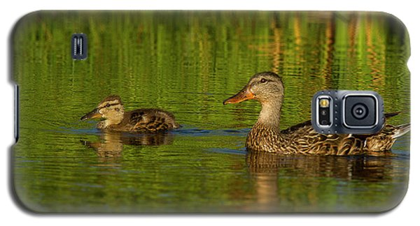 Galaxy S5 Case featuring the photograph Mother And Child Mallards by Jean Noren